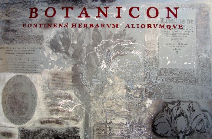 Botánicos, 2014 / 41 x 61cms / técnica mixta sobre placa de aluminio